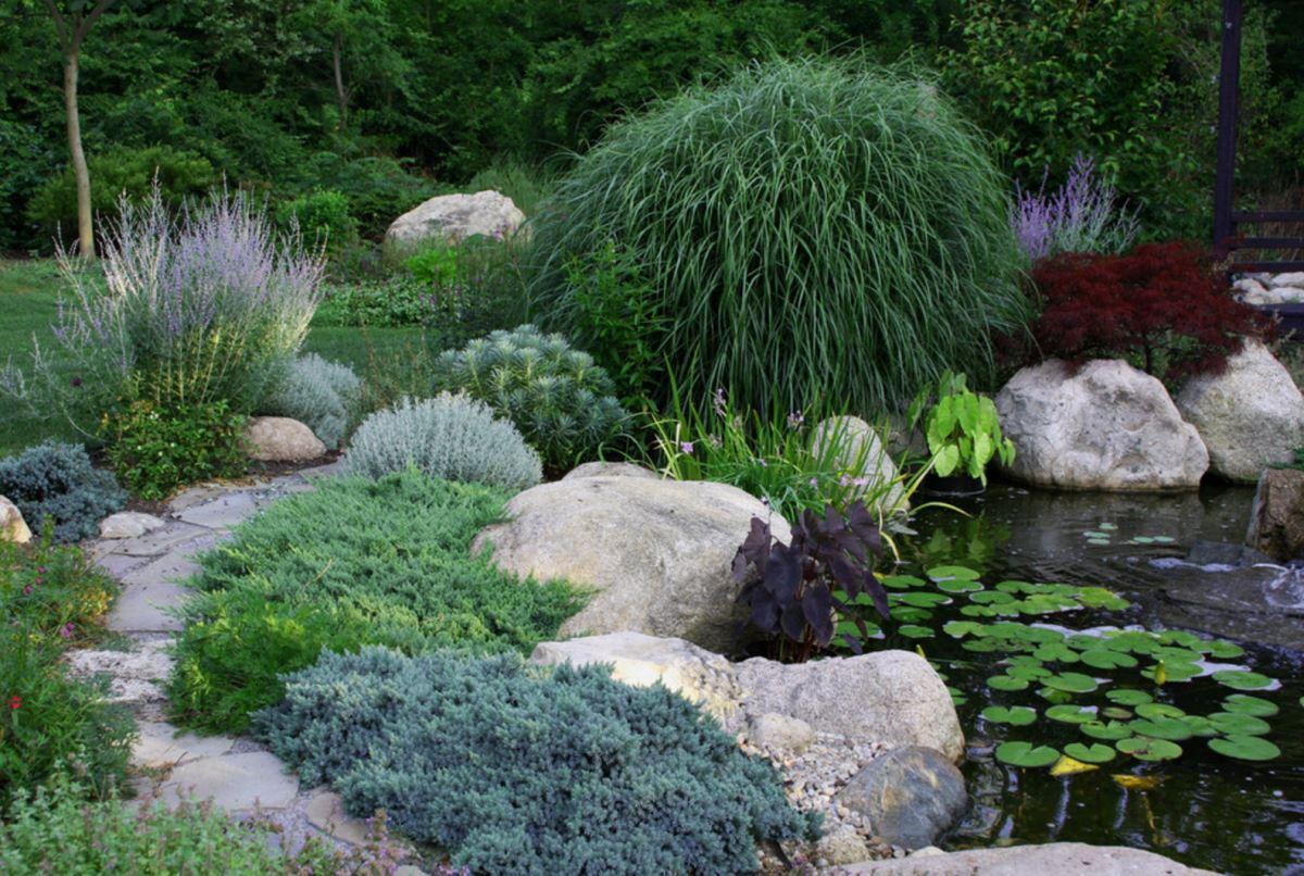 Transform your yard into a garden oasis for Garden pond life