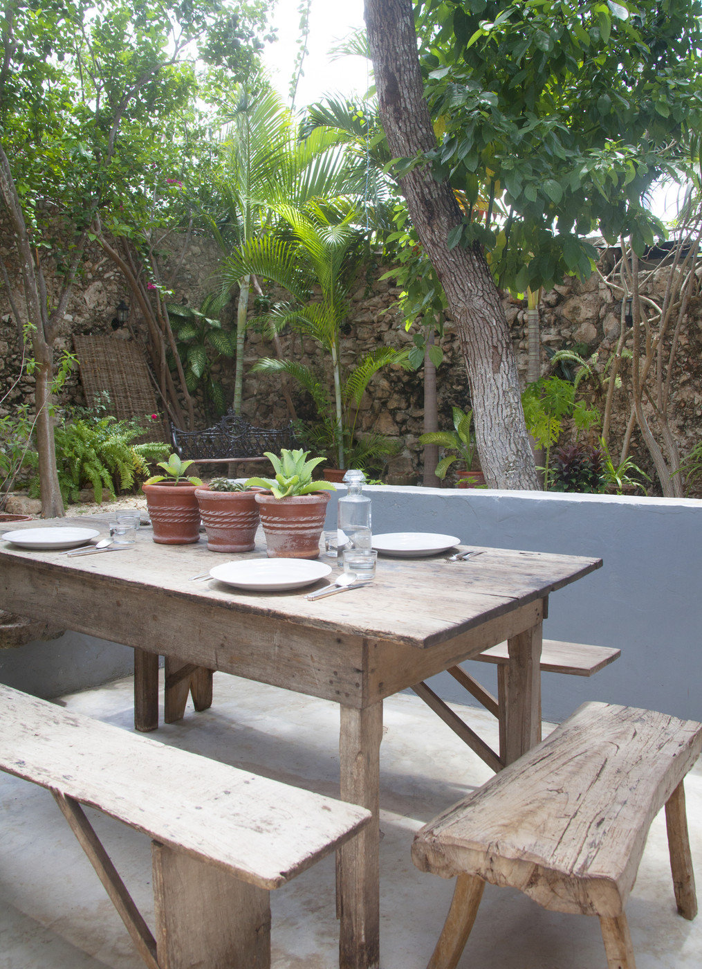 Outdoor dining area with tropical plants