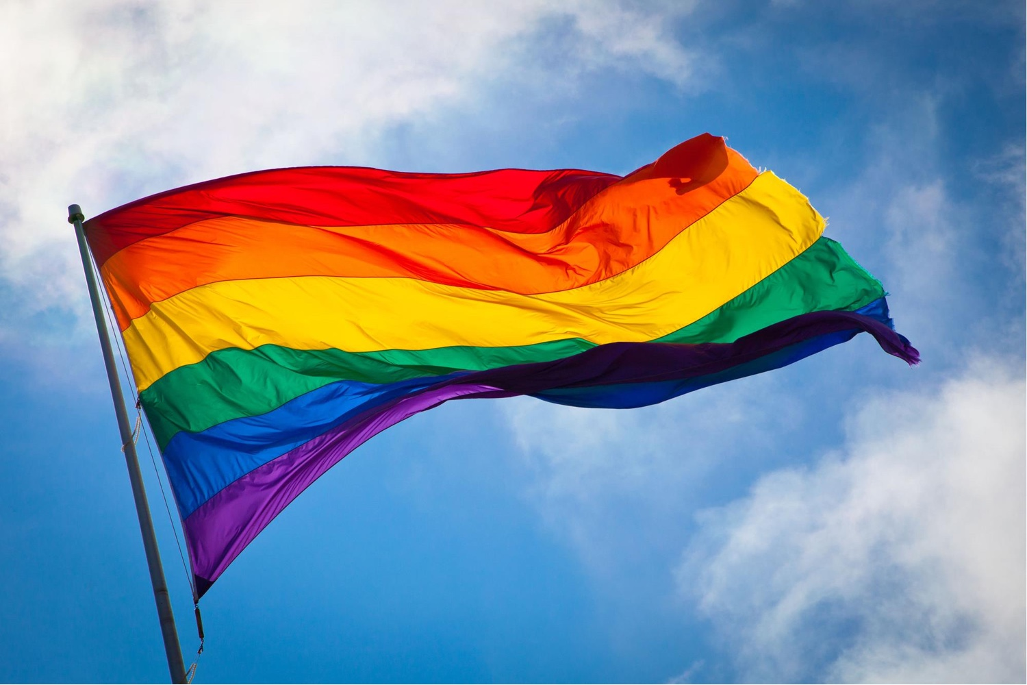 The Rainbow Flag by artist Gilbert Baker.