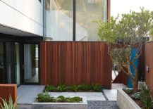 Small private yard of the remodeled Eichler Home in San Francisco
