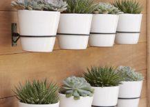 Wall-garden-from-CB2-217x155
