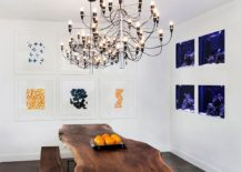 Aquariums-used-as-an-artistic-addition-to-the-modern-dining-room-with-live-edge-table-217x155