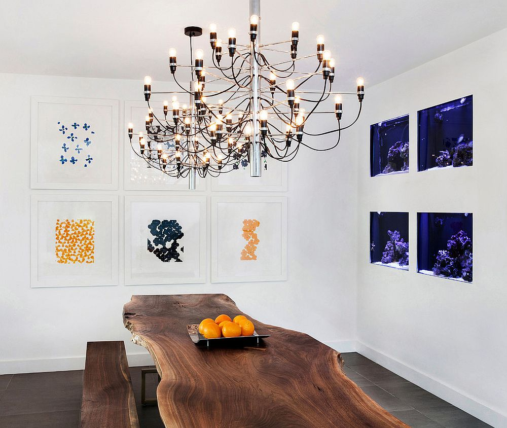 Aquariums used as an artistic addition to the modern dining room with live edge table [Design: Décor Aid]