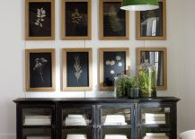 Botanicals on Black IV shapes a fabulous gallery wall