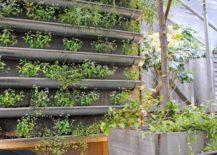 DIY-rain-gutter-garden-217x155
