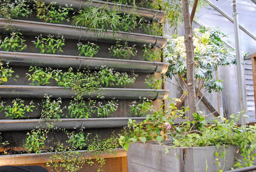 Think green 20 vertical garden ideas for Idee pour se cacher des voisins