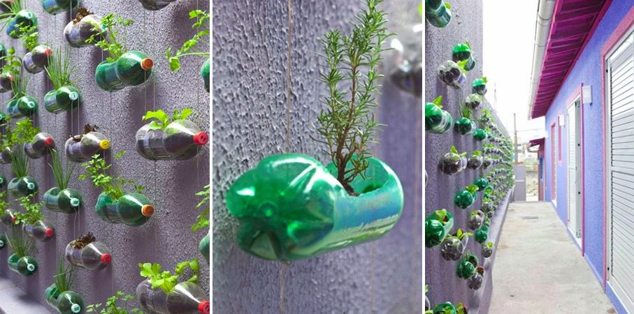 diy plastic bottle vertical garden by rosenbaum decoist. Black Bedroom Furniture Sets. Home Design Ideas