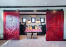 Fabulous use of color to enliven the barn doors