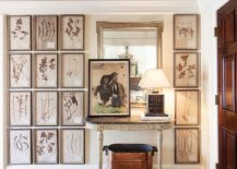 Framed-botanicals-make-a-lovely-gallery-wall-in-the-entry-217x155