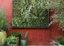 Framed-vertical-garden-by-Flora-Grubb-217x155