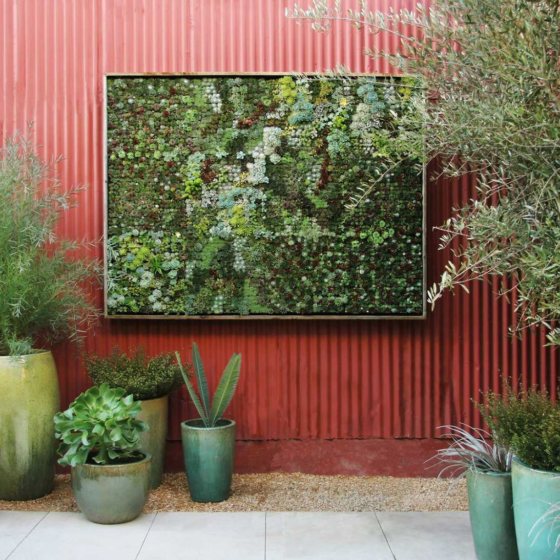 Framed vertical garden by Flora Grubb