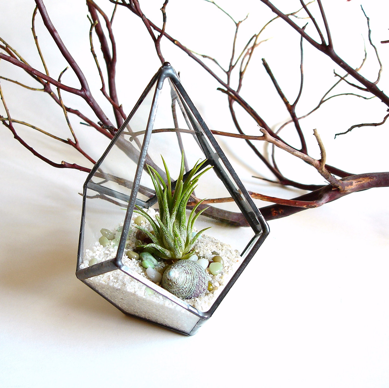 Geo air plant terrarium from Jechory Glass Designs
