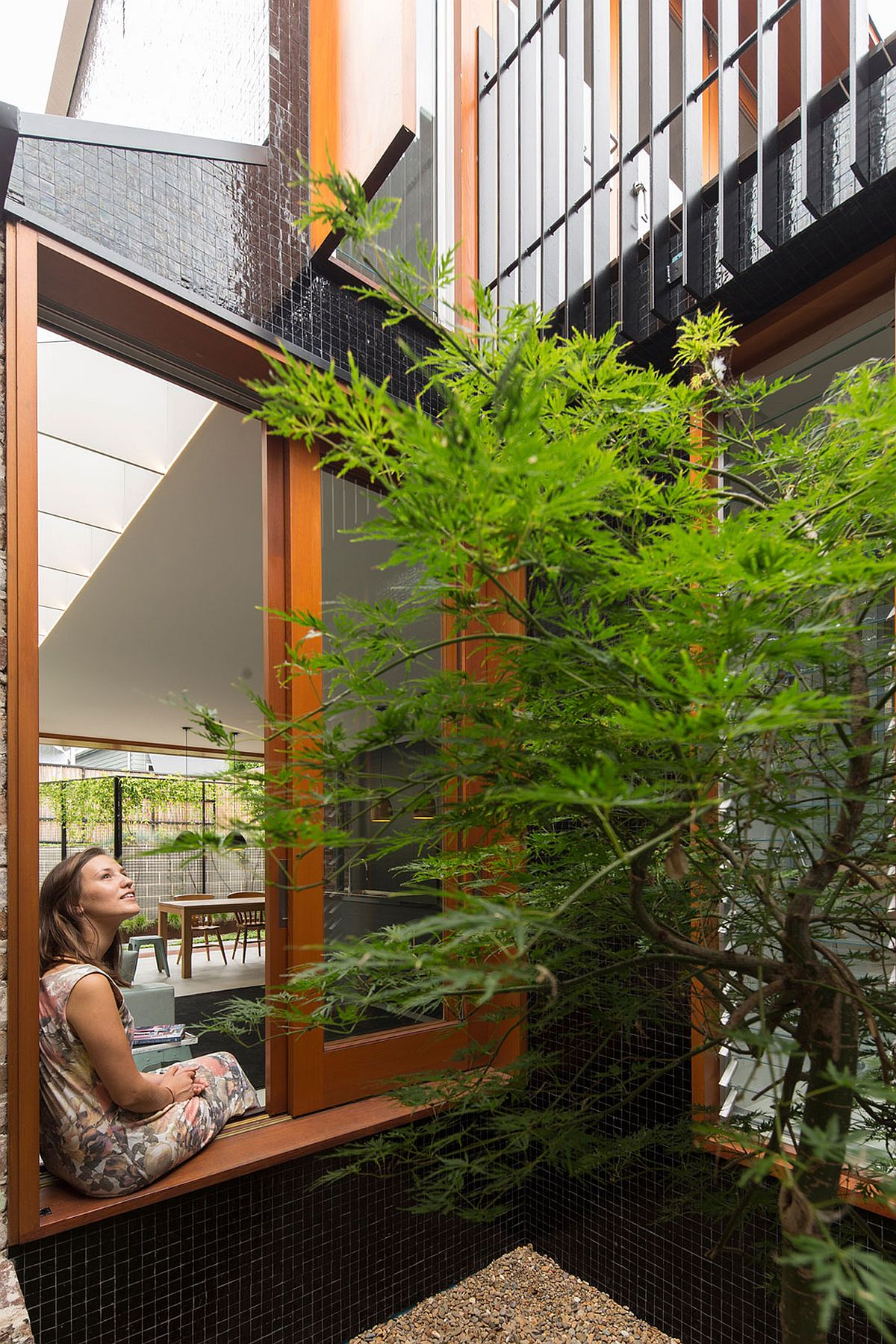 Japanese Maple for the tile lined courtyard offers a relaxing nook