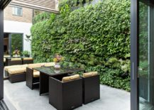 Large-living-wall-in-an-outdoor-space-217x155