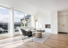 Large-sliding-doors-bring-ample-natural-light-into-the-Stockholm-apartment-217x155