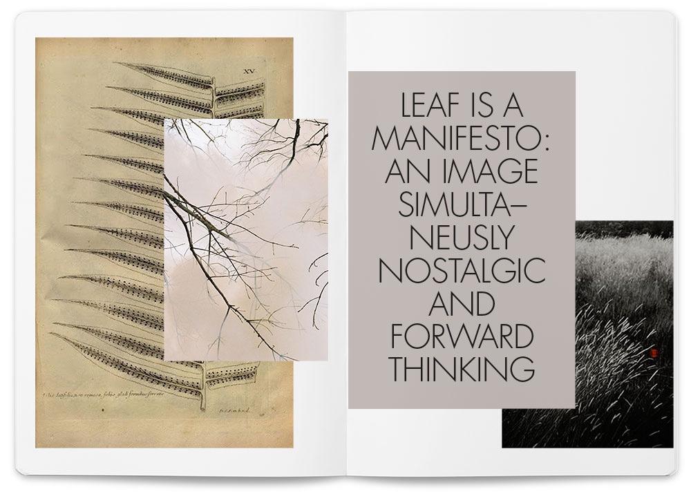 Leaf manifesto.Image courtesy ofLievore Altherr Molina.