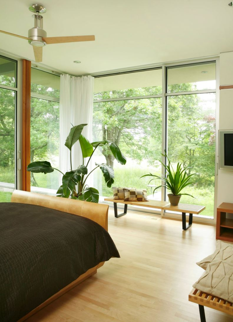 How to decorate a room with floor to ceiling windows for Room decor ideas with plants