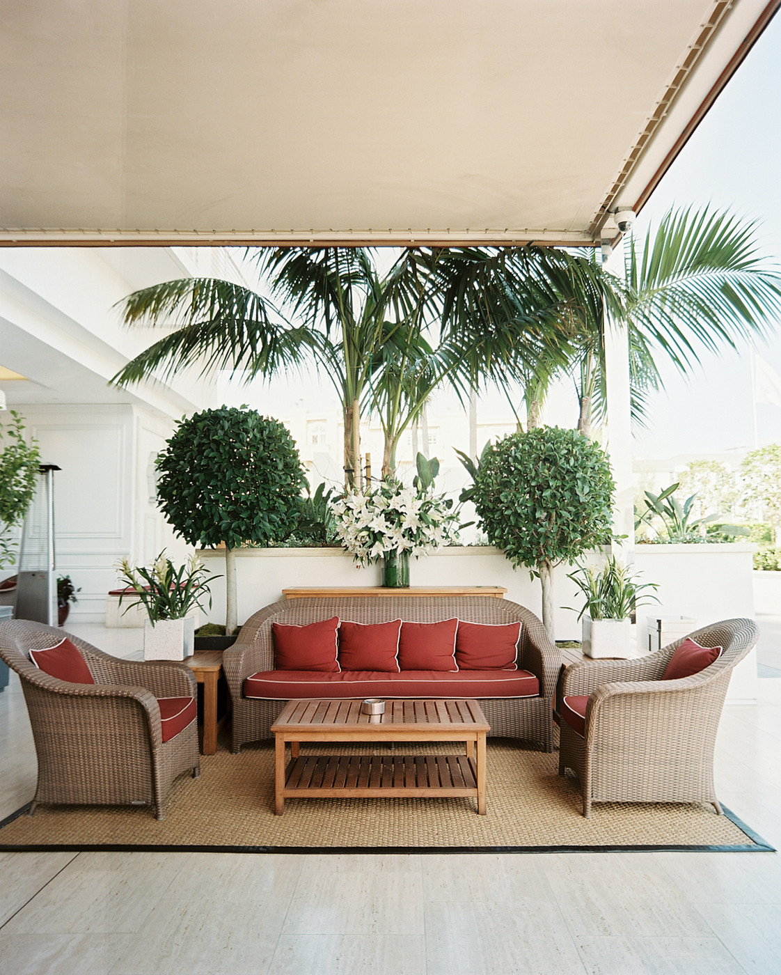 Outdoor living area with matching topiaries