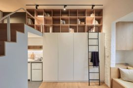 Going Vertical: Tiny 22-Sqm Apartment Maximizes Space in Style