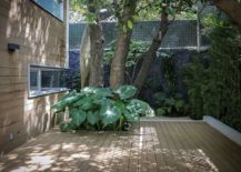 Tropical plants and natural wall of green offer ample privacy