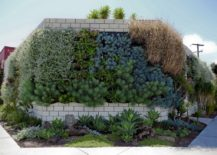 Vertical garden showcasing Wally by Woolly Pockets