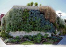 Vertical-garden-showcasing-Wally-by-Woolly-Pockets-217x155