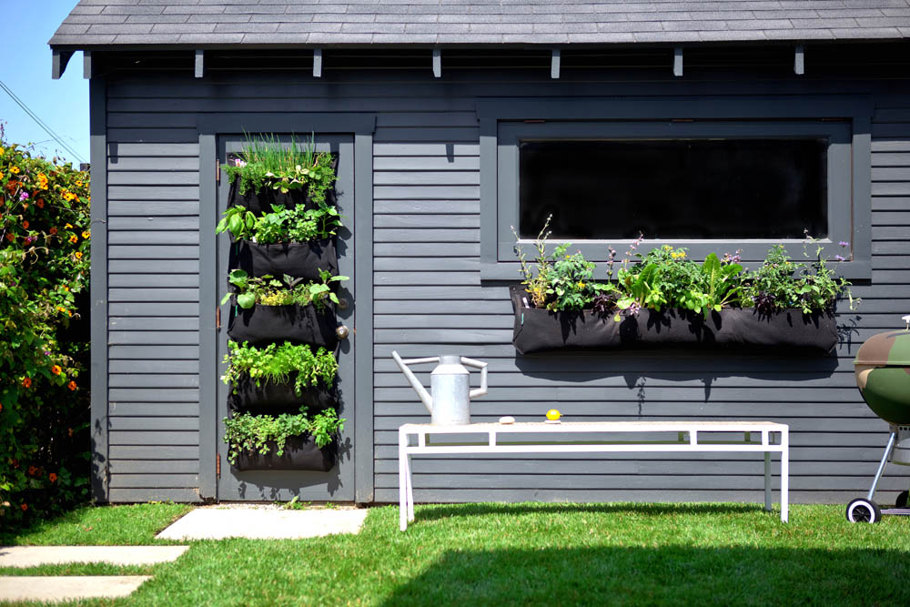 Vertical Garden Design With Gazebo Installation View In Gallery Wally By Woolly Pockets