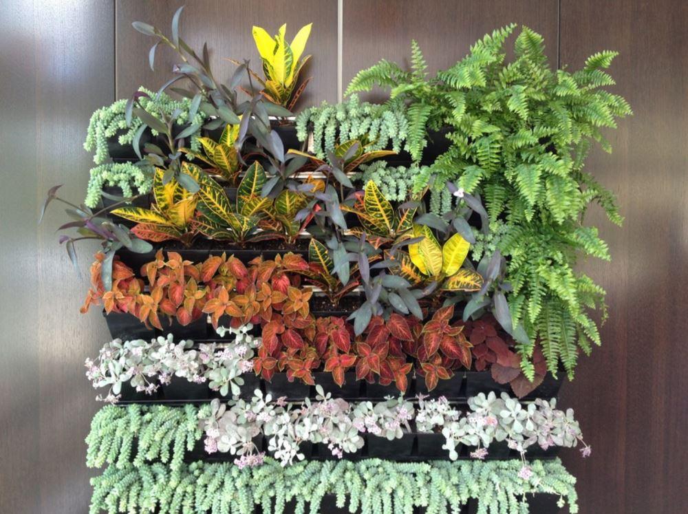 vertical garden system by DIRTT