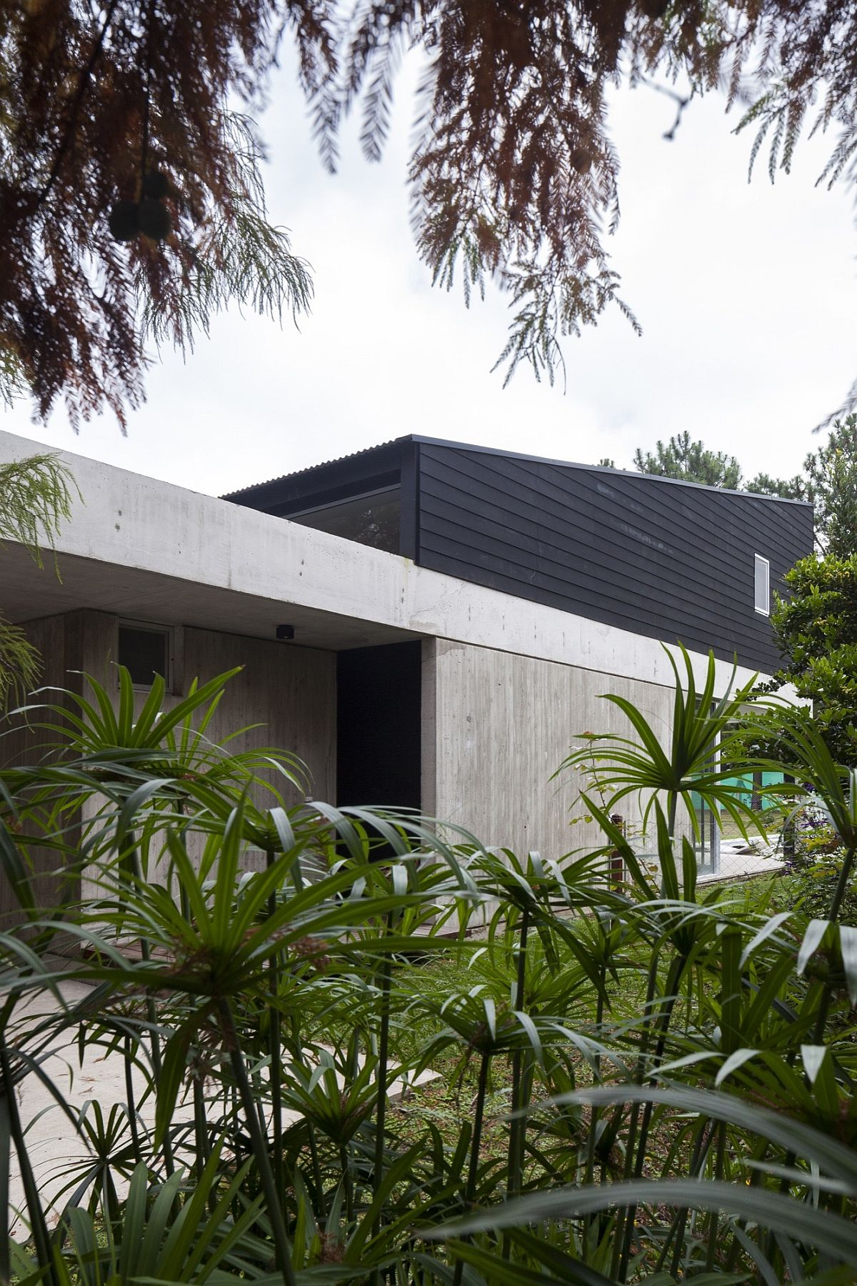 House DV by Colle-Croce in Argentina