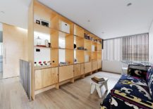 Make-the-most-out-of-your-room-divider-by-using-it-as-a-display-and-storage-unit-217x155