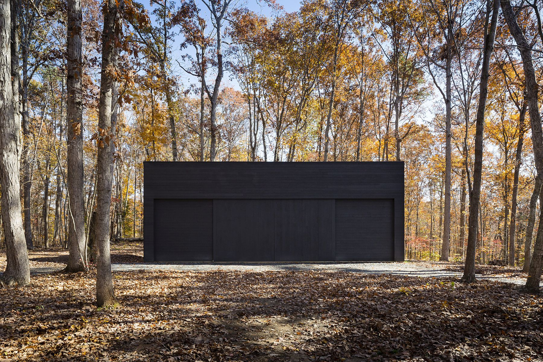 Black extreior of the house lets it disappear into the forest at night