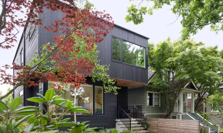 Pink House: Stained Cedar Exterior Conceals a Clean Modern Interior