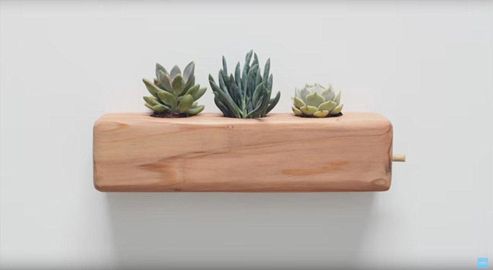 DIY succulent planter from HomeMade Modern