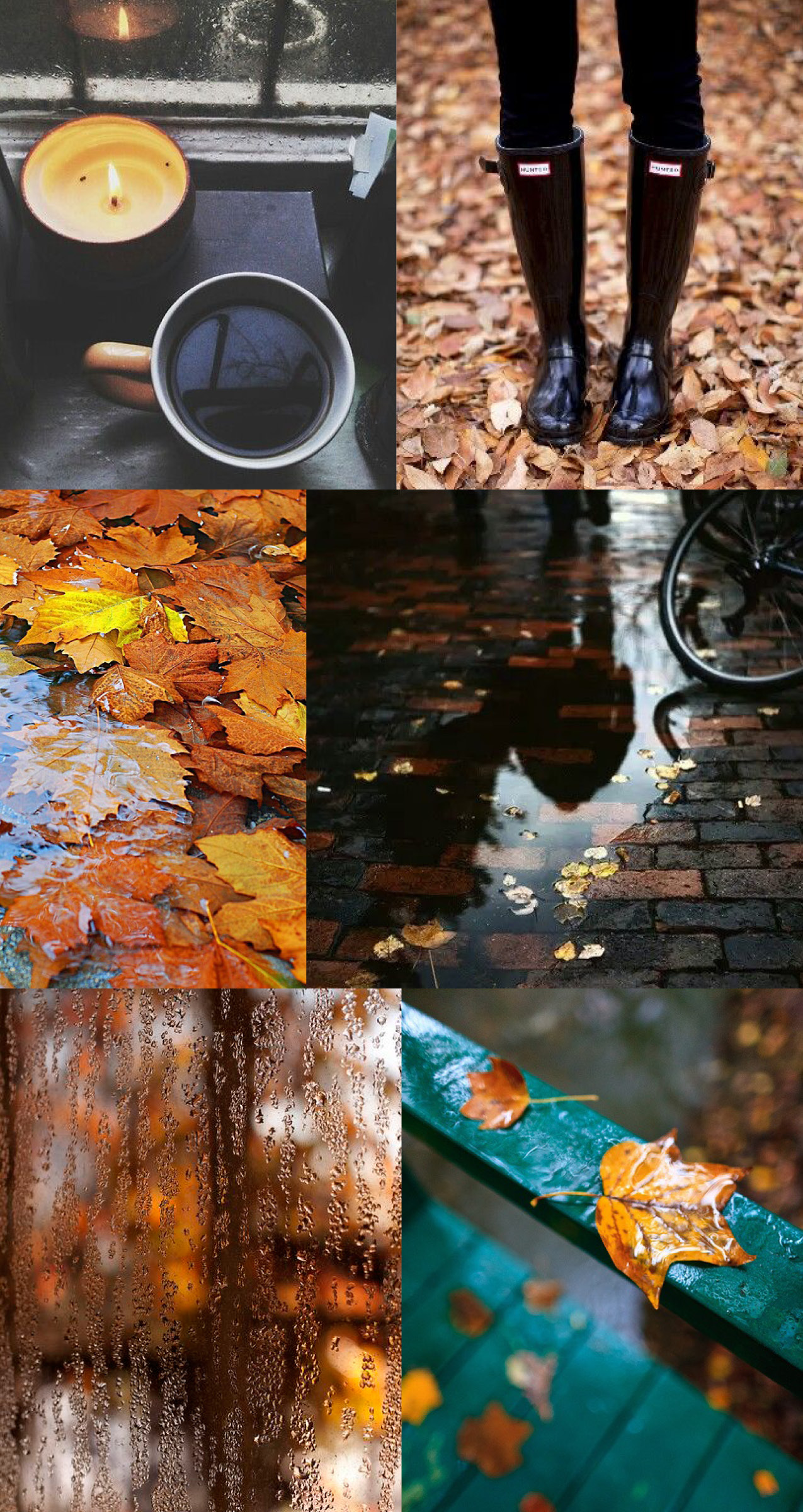 Rainy day fall mood board from Elements