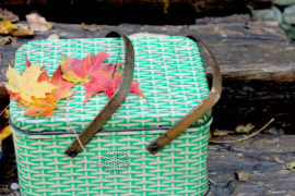 An Unforgettable Outing: Fall Picnic Essentials