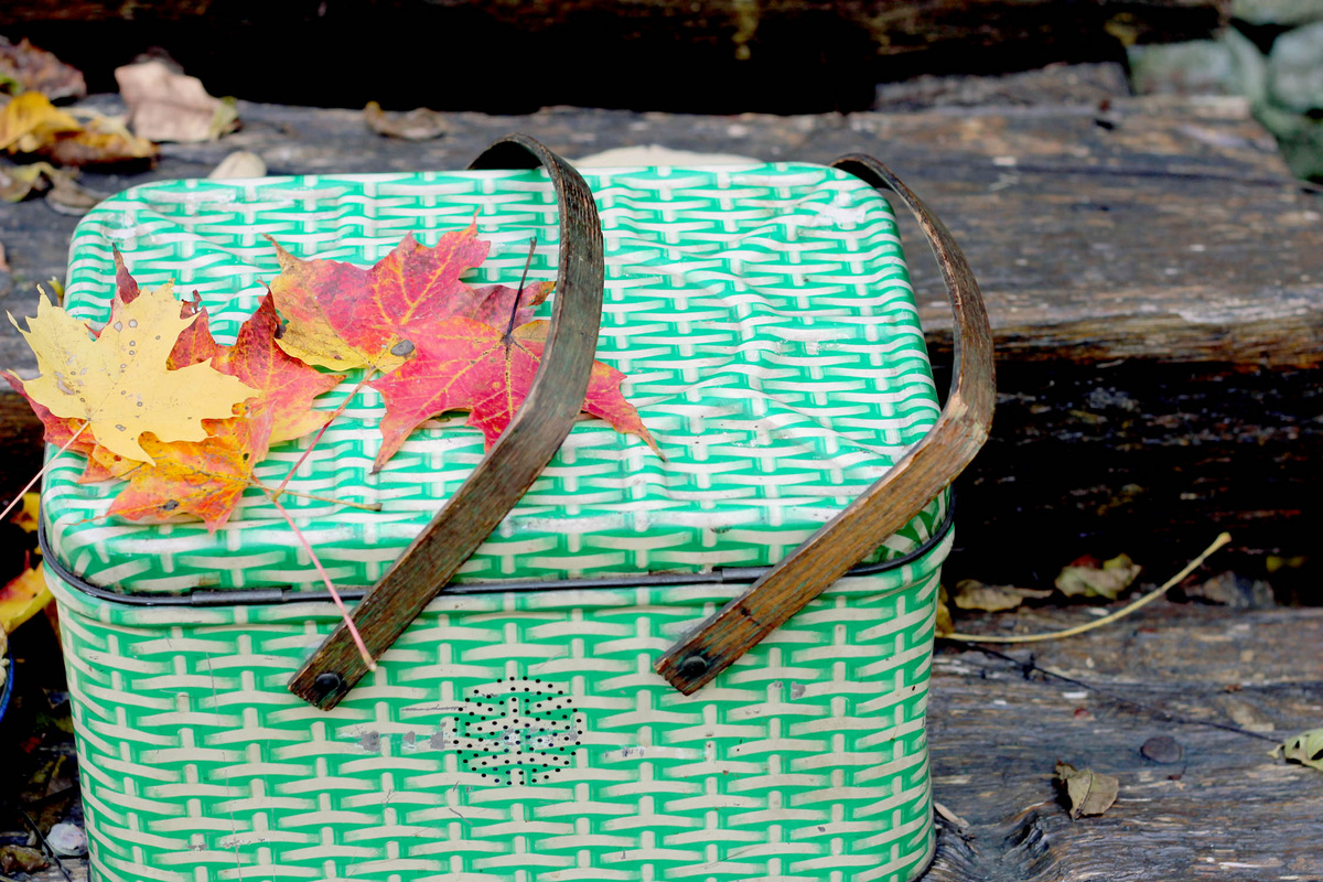 Fall picnic style An Unforgettable Outing: Fall Picnic Essentials