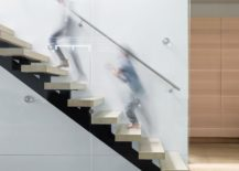 Glass balustrade and floating risers create a fabulous, sculptural stairway