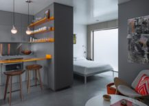 Micro-apartment-with-a-separate-sleeping-area-217x155