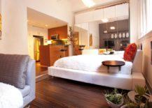 Studio apartment by Susan Diana Harris Interior Design