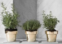Flower Pots polished
