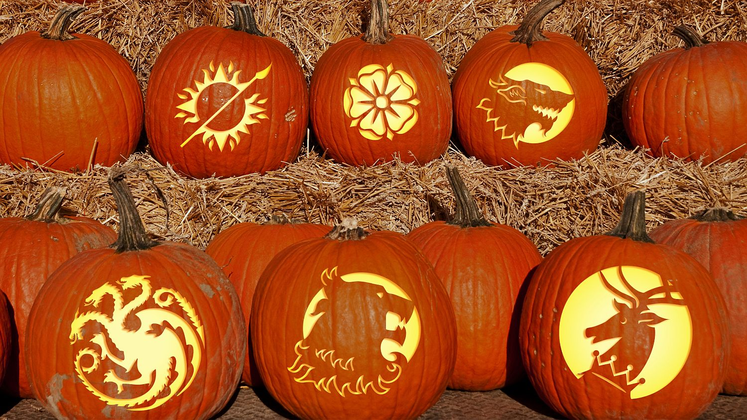 Game of Thrones pumpkin carving ideas [From: Winter is Coming]