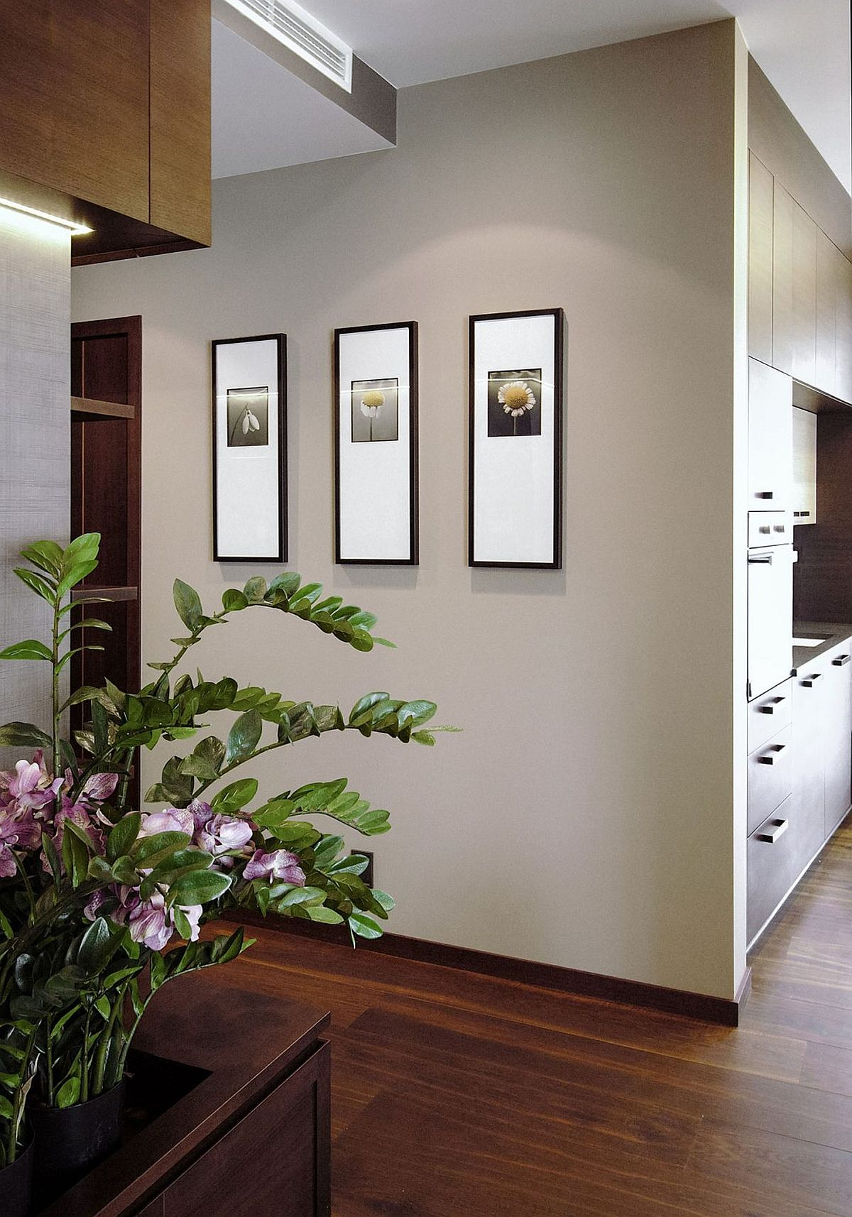 Gray walls highlight the photographs on display