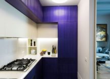 Kitchen cabinets in blue add both color and textural contrast to the small kitchen