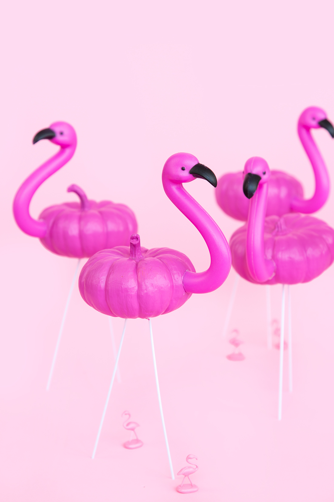 Mini flamingo pumpkins by Aww Sam