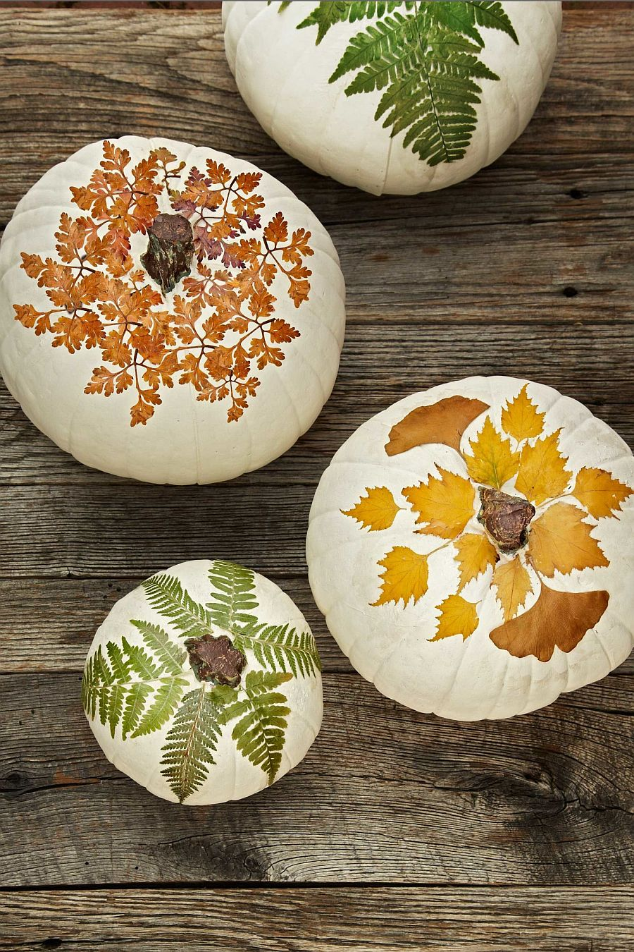Nature-inspired painted pumpkin idea for a smart Halloween [From: Shop Terrain]