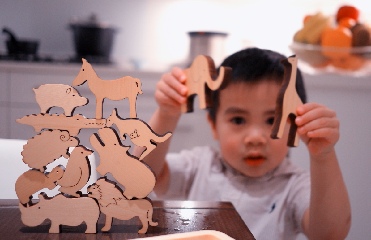 Noe wooden animal toys. Image via ePloof.