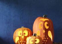 Pumpkin owls with lovely lighting