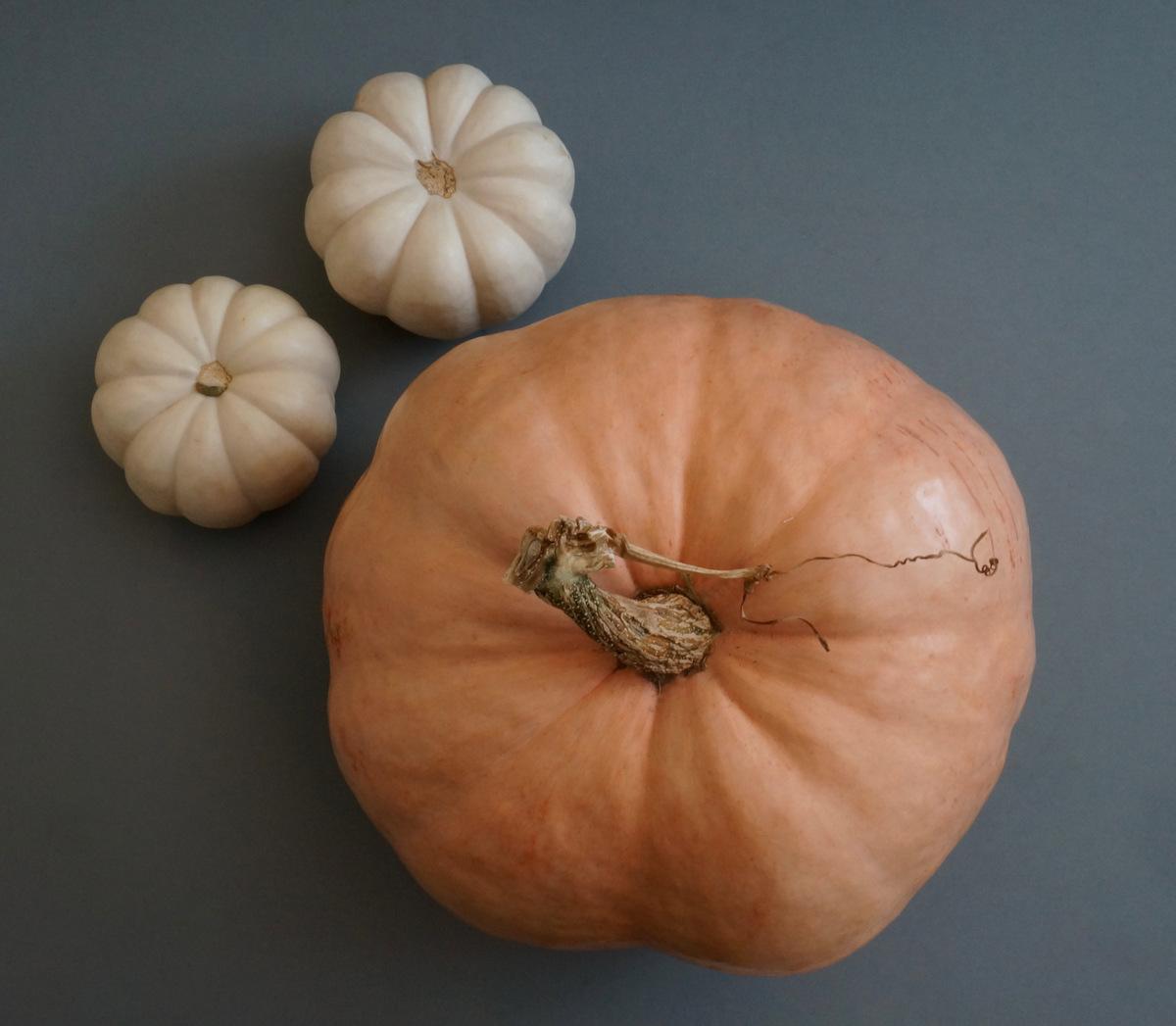 Pumpkins in peach and white