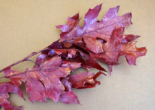 Red-leaves-217x155