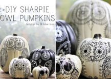 Uber-cool-sharpie-owl-pencils-steal-the-show-in-any-room-they-sit-in-217x155